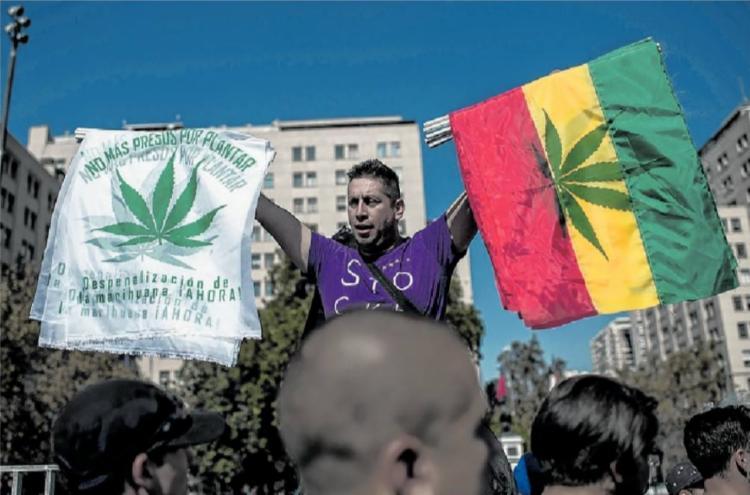 Uso recreativo e medicinal da Cannabis sativa levou milhares de usuários ao Palácio La Moneda ontem - Foto: Martin Benetti   AFP Photo
