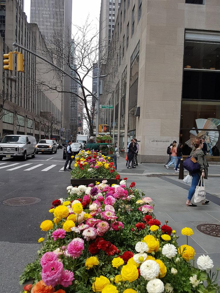As ruas das cidades ganham floreiras e uma decoração mais descontraída - Foto: Carlos Moraes l A TARDE SP
