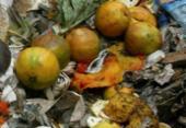 Mais de 60% dos brasileiros desperdiçam alimento em bom estado, aponta pesquisa | Foto: Carlos Casaes | Arquivo | Ag. A TARDE