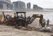 Operação retira carcaça de baleia encalhada em praia de Salvador | Foto: Raul Spinassé | Ag. A TARDE
