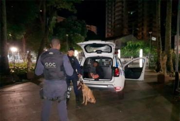 Cadela impede roubo de fiação na Praça do Campo Grande | Divulgação | GCM