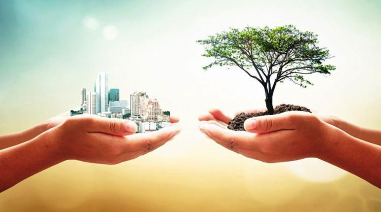 Programação faz parte da Semana Nacional do Meio Ambiente - Foto: Divulgação | ADEMI