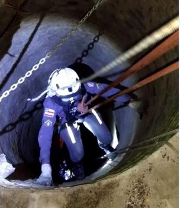 O corpo de bombeiros precisou de mais de uma hora para concluir o salvamento - Foto: Divulgação | SSP-BA