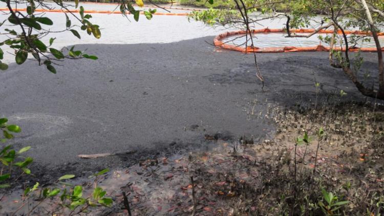 Óleo se espalhou pelo rio São Paulo, após vazamento de duto da Petrobras - Foto: Cidadão Repórter | Via WhatsApp