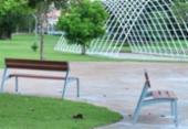 Coelba abre concurso para criação de árvore solar no Parque da Cidade | Foto: Max Haack | Agecom