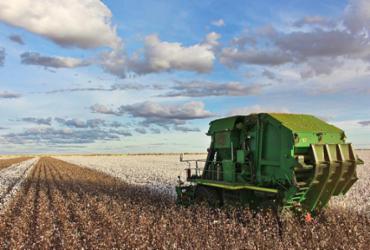 ABAPA certifica como sustentável mais de 75% da produção de algodão