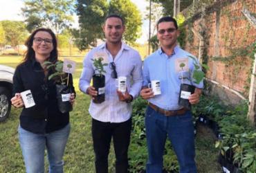 Produtores rurais incentivam plantio de árvores nativas no Oeste baiano