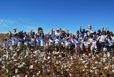 Estudantes de Barreiras participam de projeto sobre produção de algodão