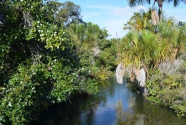Retomada do regime de chuvas garante maior nível de água dos rios do Oeste baiano