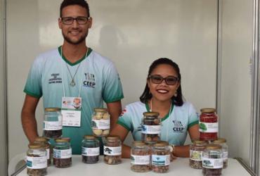 Cursos gratuitos de ensino técnico oferecem 9 mil vagas na Bahia | Divulgação