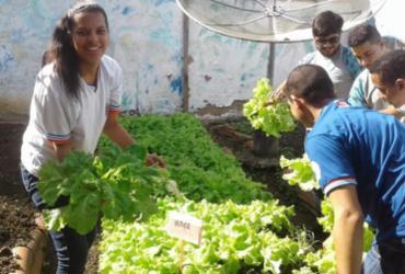 Estudantes de Firmino Alves produzem alimentos orgânicos em horta escolar