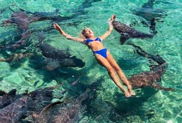 Modelo é mordida por tubarão durante sessão de fotos nas Bahamas | Reprodução | Instagram