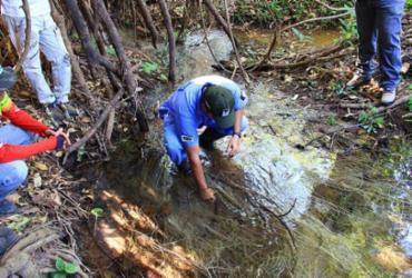 Correntina tem primeira nascente de rio recuperada