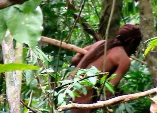Único sobrevivente de etnia, índio vive isolado há 22 anos na Amazônia   Acervo l Funai