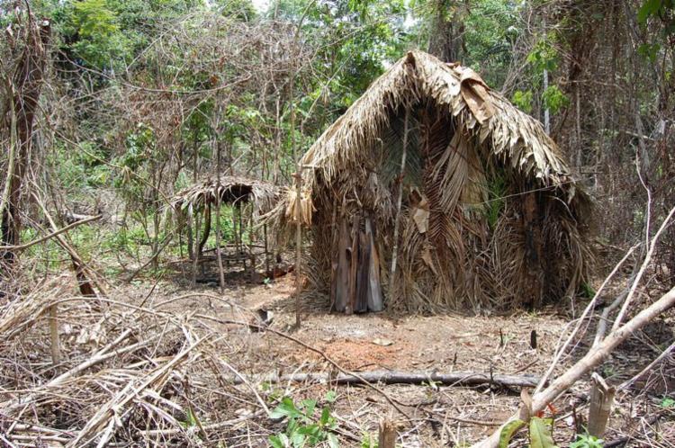 Índio da Terra Indígena Tanaru vive isolado na Amazônia