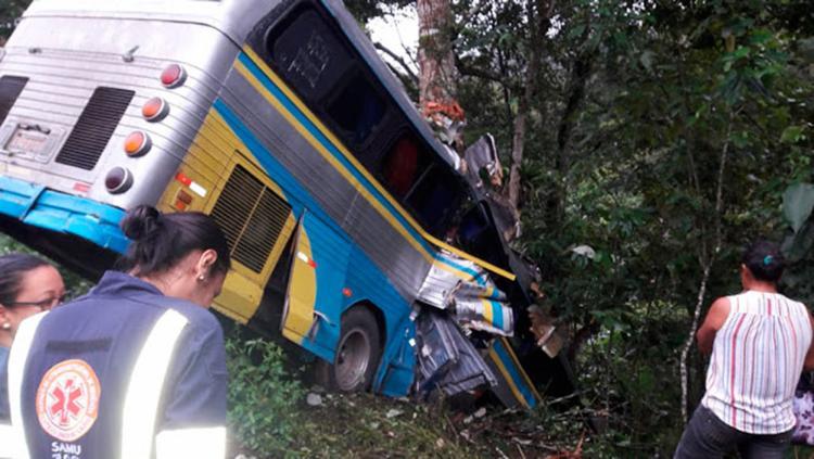 Veículo colidiu com árvore e caiu em uma ribanceira - Foto: Reprodução | Ilhéus Notícias