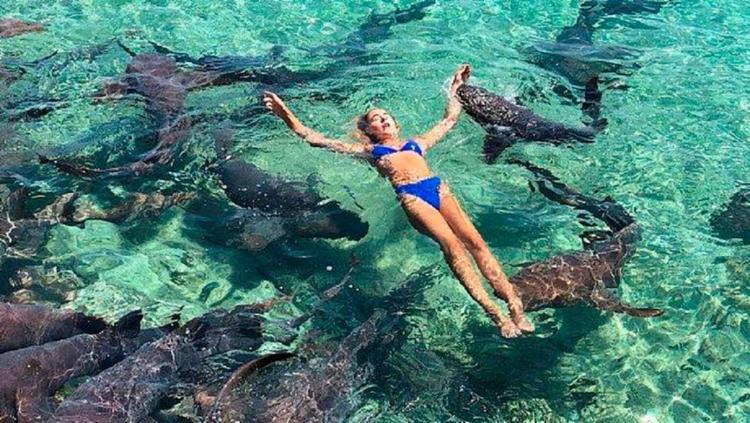 Katarina posava em meio aos tubarões quando foi mordida no braço - Foto: Reprodução | Instagram