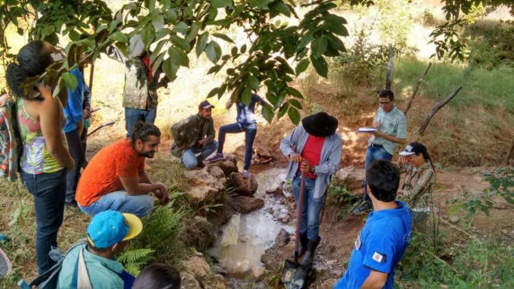 A ação é resultado de uma capacitação promovida por produtores rurais, por meio da ABAPA e da AIBA - Foto: Divulgação