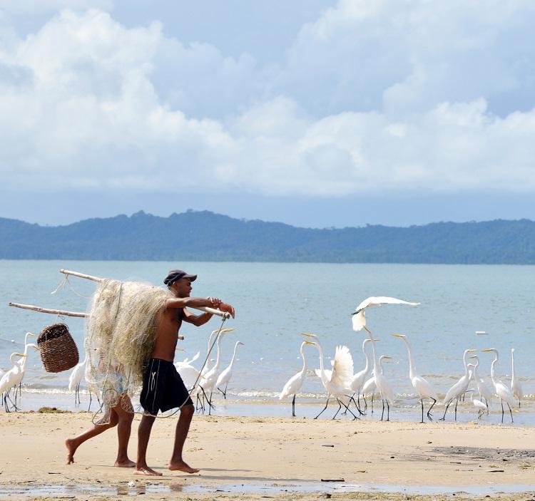 Praia deslumbrante da região com vista para a mata atlântica. Foto: Shirley Stolze / Ag. A TARDE
