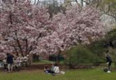 O que fazer em Nova York durante a primavera | Foto: Carlos Morais | Ag. A TARDE