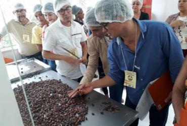 Fábrica-Escola de Chocolate em Gandu promove curso para agricultores familiares e estudantes
