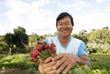 Driblando questões burocráticas e de logística, mercado de alimentos orgânicos cresce em Salvador | Joá Souza / Ag. A TARDE