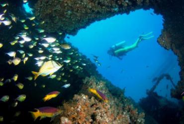 Turismo de mergulho na Baía de Todos-os-Santos ganha incentivo