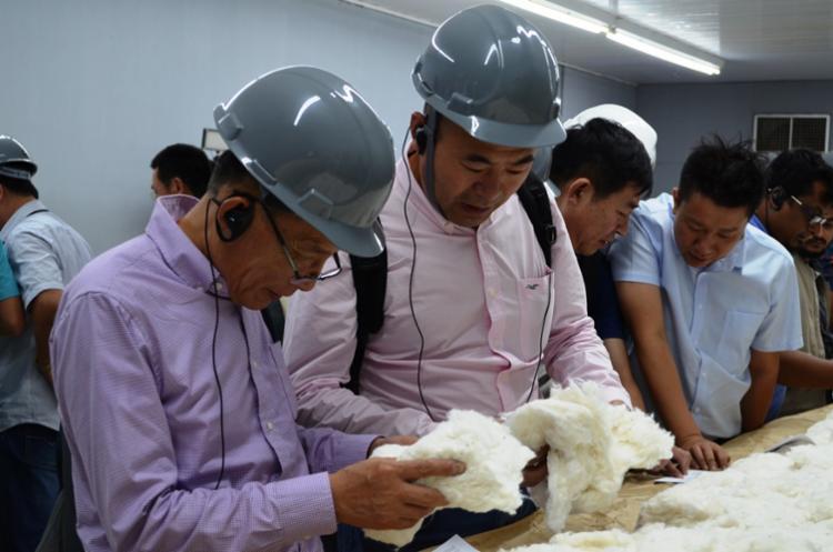 A Bahia é o primeiro Estado brasileiro a receber um grupo de compradores internacionais de algodão - Foto: Divulgação