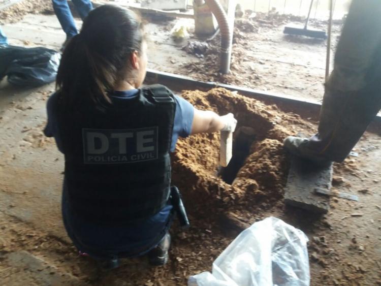 As apreensões resultaram em investigações policias instauradas na DTE local - Foto: Divulgação | PC