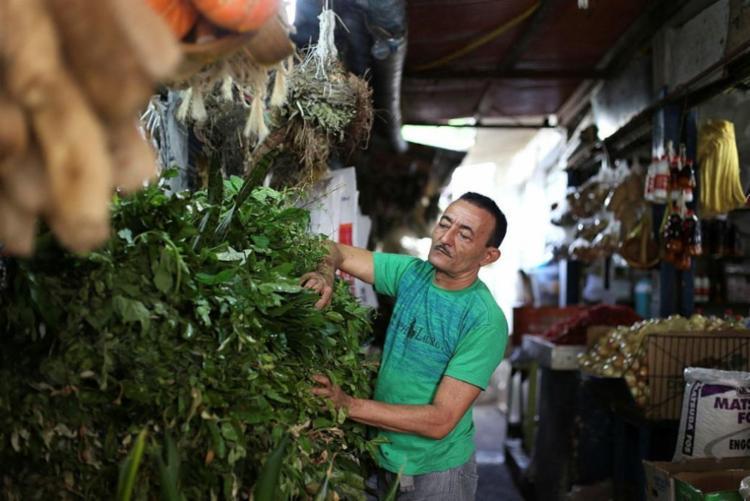 Edmundo Oliveira, o Gato, trabalha numa barraca de folhas na Feira das Sete Portas - Foto: Raul Spinassé / Ag. A TARDE