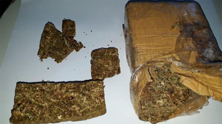 O meio quilo da maconha deveria ser trasportada de Una até Ilhéus - Foto: Divulgação | SSP-BA