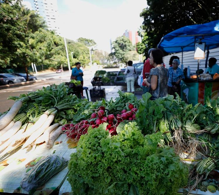 A feira do Parque da Cidade é organizada pela Associação de Produtores Orgânicos e Feirantes ( Apof) e acontece todas as quintas-feiras