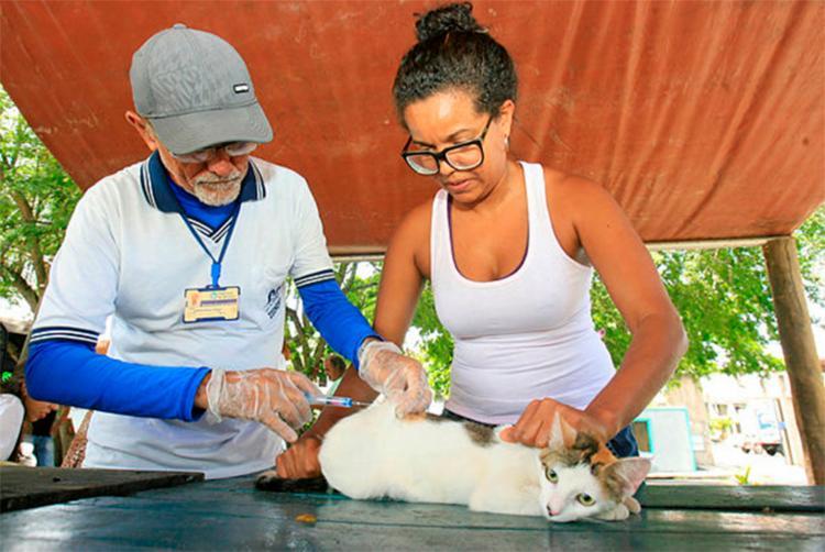 Campanha de vacinação ficará disponível até o dia 17 de agosto - Foto: Edilson Lima | Ag. A Tarde