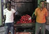 Dupla é presa transportando droga em caminhão com selo da prefeitura no ferry | Foto: Alberto Maraux | SSP-BA | Divulgação