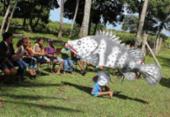 No Dia Mundial da Limpeza: projeto realiza ação em praia no extremo sul | Foto: Divulgação