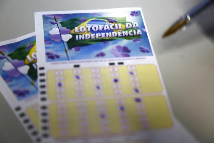 Lotofácil da Independência sorteou prêmio de R$ 91.702.300,80 no último sábado - Foto: Reprodução