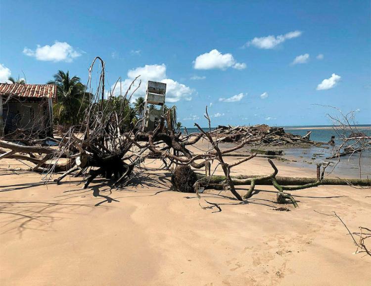A limpeza vai focar nas construções atingidas pela erosão marítima e retirada de árvores - Foto: Divulgação l Prefeitura de Vera Cruz