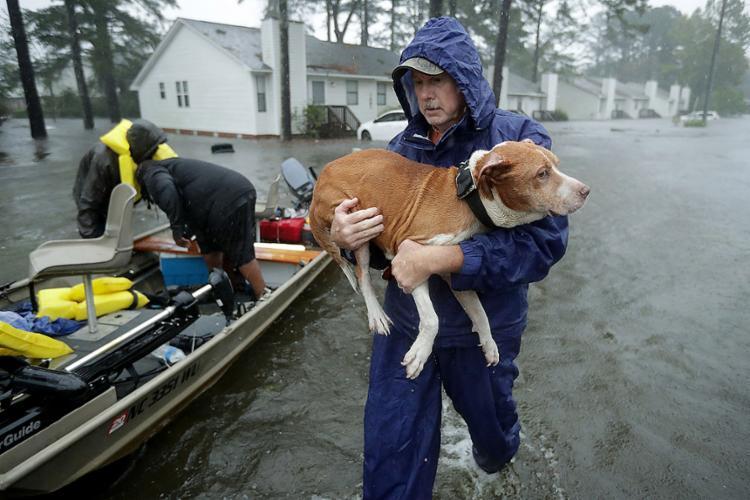 Centro Nacional de Furacões afirma que fenômeno ainda causará inundações 'catastróficas' na Carolina do Norte e do Sul - Foto: Chip Somodevilla l AFP