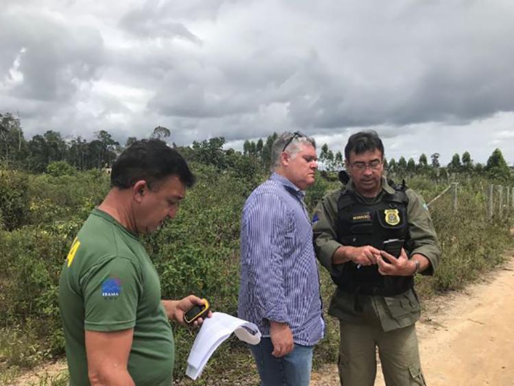Objetivo da ação é identificar as áreas desmatadas, punir os responsáveis e exigir reparação - Foto: Divulgação | MP-BA