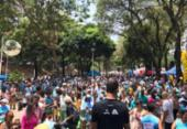 Cãominhada promove 14ª edição em Salvador neste domingo | Foto: Divulgação