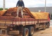 Caminhoneiro é flagrado transportando madeira ilegal na BR-242 | Foto: Divulgação| PRF