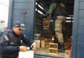 Operação resgata 529 animais silvestre em Feira de Santana | Divulgação | PRF