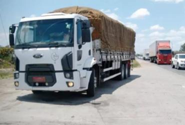 Homem é preso após ser flagrado com caminhão roubado na BR-116 | Divulgação | PRF
