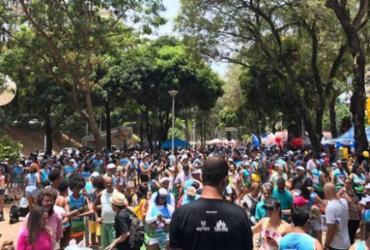 Cãominhada promove 14ª edição em Salvador neste domingo | Divulgação