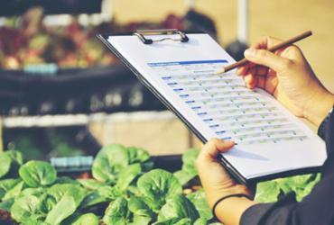 Engenheiro Agrônomo: crescimento do agronegócio valoriza a profissão