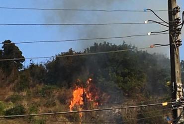 Incêndio em vegetação assusta moradores do Imbuí | Bianca Pereira | Ag. A TARDE
