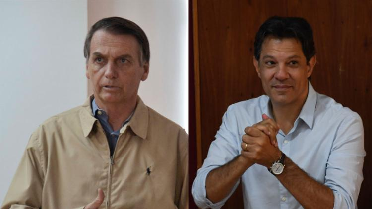 Concessões de títulos de cidadania, comendas e afins. Aí entra a dupla Bolsonaro x Haddad - Foto: Tânia Rego | Ag. Brasil e Mauro Pimentel | AFP