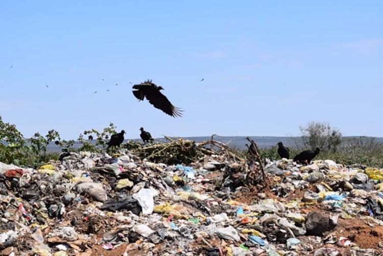 Os aterros sanitários foram identificados perto de fazendas de hortifrútis - Foto: Divulgação | Cecom | MP
