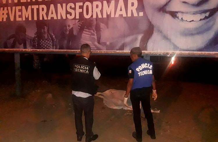 Corpos das vítimas foram encaminhados ao IML de Jequié - Foto: Reprodução   Blog Marcos Frahm