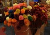 Salvador recebe feira de moda e artesanato na quinta-feira | Reprodução | Instagram